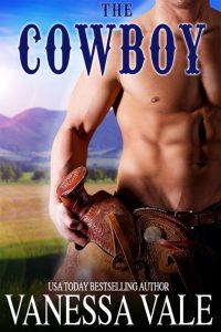cowboy_web